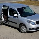 Sprzedaż małych samochodów dostawczych w 2013 roku, czyli francusko-rumuńska dominacja