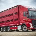 Transport zwierząt będzie mógł trwać maksymalnie 8 godzin – ważne propozycje zmian w przepisach UE