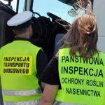Co należy wiedzieć o kontrolach ciężarówek oraz firm transportowych – kilka praktycznych informacji